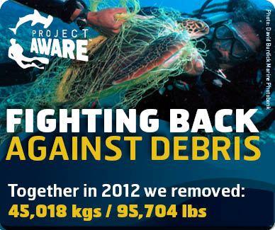 Dive Against Debrs 4.1.13