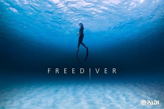 701770_1_freediver_cover