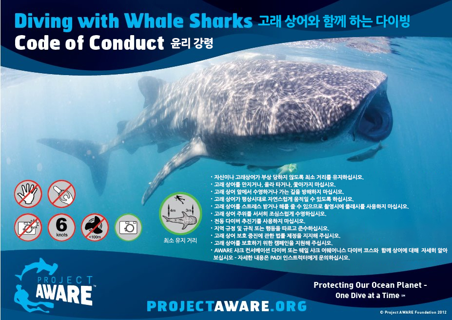 DivingwithWhaleSharks-CodeofConduct-KR