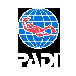 한국의 PADI 프로스